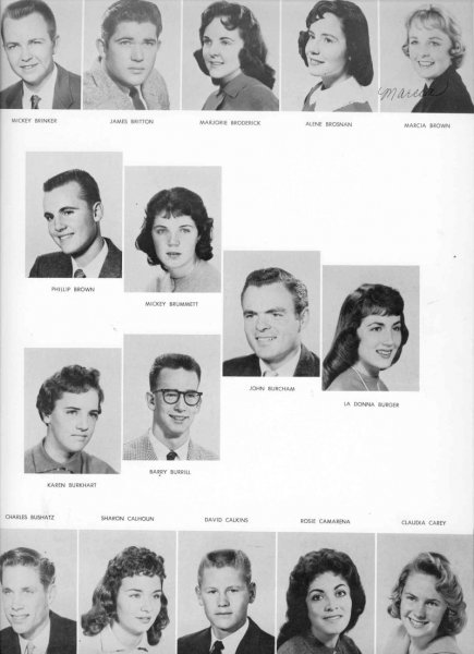 1960pg3hg